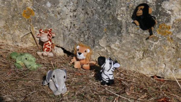 marionnette-les-animaux-dafrique2