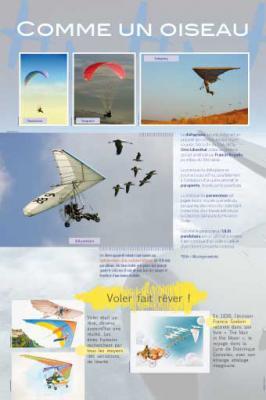 Avions-8