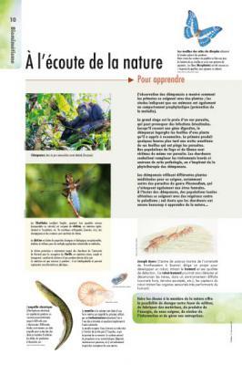 biomimetisme-10