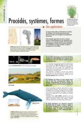 biomimetisme-6