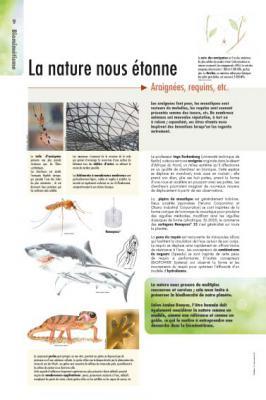 biomimetisme-9