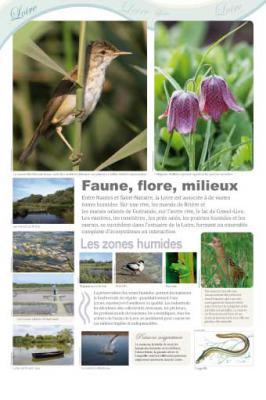 Loire-14